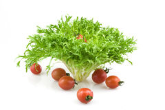 Vegetables. Joan of fruit and vegetables Royalty Free Stock Image