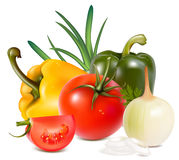 Vegetables. Photo-realistic  of vegetables Royalty Free Stock Photo