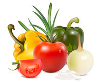 Vegetables. Tomato, onion and color peppers. Illustration Royalty Free Stock Photos