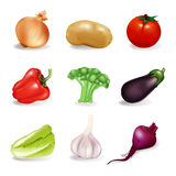 Vegetables. Set, isolated on the white Royalty Free Stock Photography