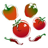 Vegetables. Red tomatoes and peppers.  illustration Royalty Free Stock Image