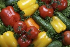 Free Vegetables Stock Photo - 1449480
