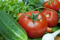 Vegetables. Different kind of vegetables closeup Royalty Free Stock Images