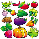 Vegetables. The vegetables Stock Images
