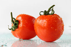 Fresh tomatoes. Still-life with tomatoes on a light background Stock Photos