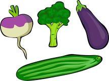 Vegetables vector illustration