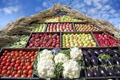 Vegetables. Different vegetables arranged in a pyramid style Stock Images