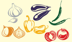 Vegetables. The images of vegetables. a vector illustration Stock Images