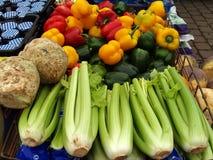Vegetables. Fresh vegetables Royalty Free Stock Photo