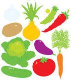 Vegetables. Vector clip-arts of vegetables, on a white background Stock Photo