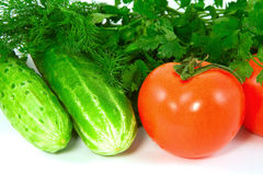Vegetables. Cucumbers, tomatoes and greens, close up Royalty Free Stock Images