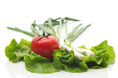 Vegetables. Tomato, salad and onion on white background Royalty Free Stock Images