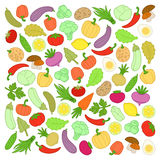Vegetables. Set of vegetables on a white background Royalty Free Stock Image