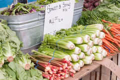 Vegetables. For sale in a produce stand at a Farmer's Market. Lettuce, rhubarb, celery, carrots, new potatoes and spring mix Royalty Free Stock Photos