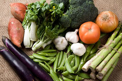 Vegetables. A shot of variety of fresh vegetables Stock Images