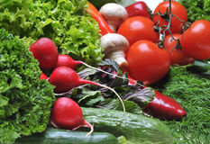 Vegetables. A lot fresh vegetables on table royalty free stock images