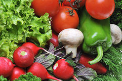 Vegetables. A lot fresh vegetables on table royalty free stock image