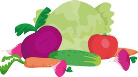 Vegetables. Still life with tomato, cabbage, cucumber and carrot Stock Images