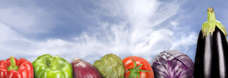 Vegetables. Composition with vegetables on a sky background (panoramic Royalty Free Stock Photo