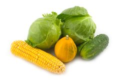 Vegetables. Cucumber pumpkin cabbage and corn on a white background Royalty Free Stock Photography