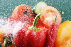 Vegetables. Miscellaneous vegetables with some water Stock Photos