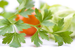 Vegetables. Studio isolated over white royalty free stock photos