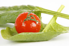 Vegetables. Very fresh and tasty vegetables stock image