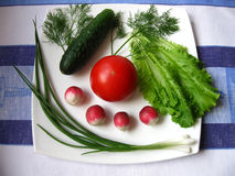 Vegetables. On the white plate Royalty Free Stock Photography
