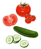 Vegetables. Clip-arts of tomato and cucumber Royalty Free Stock Photos