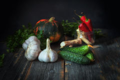 Vegetables against a dark background in style  rustic. Different vegetables against a dark background in style a rustic Stock Photography