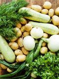 Vegetables And Herbs Stock Images