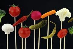 Vegetables arrangement Royalty Free Stock Photo