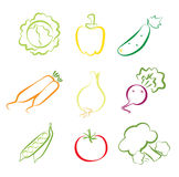 Vegetables assorted. Composition of simplified vegetable icons Stock Photo