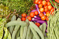 Vegetables background. Colorful vegetables background on the table Royalty Free Stock Photos