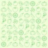 Vegetables. Background from vegetables. A vector illustration vector illustration