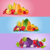Vegetables banner design. Royalty Free Stock Photography