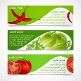 Vegetables banners horizontal Stock Photos