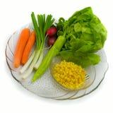 Vegetables basic Stock Photography