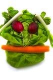 Vegetables basic Stock Image