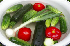 Vegetables in the basin: tomatoes, cucumbers, onion. Zuccinis stock photos