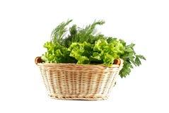 Vegetables in basket Stock Images
