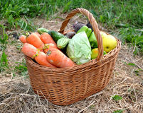 Vegetables in a basket Royalty Free Stock Image
