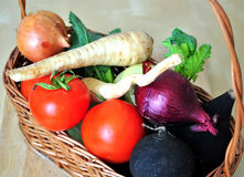 Vegetables basket. With fresh vegetables on a spring day Royalty Free Stock Images