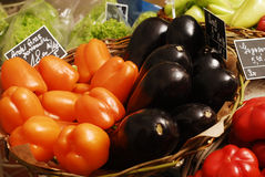 Vegetables basket. Basket with fresh food as eggplant, capsicum and salad Stock Images