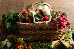 Vegetables in the basket royalty free stock photos
