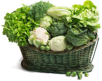 Vegetables in the basket Stock Images