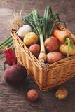 Vegetables in a basket: beets, onions, garlic, dill, potatoes, carrots. On an old wooden background Royalty Free Stock Photography