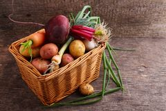 Vegetables in a basket: beets, onions, garlic, dill, potatoes, carrots. On an old wooden background Stock Image
