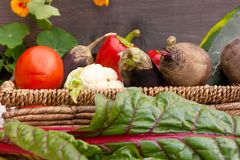 Vegetables in a basket in the foreground chard leaves stock photo
