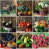 Vegetables in the basket. fragments of still lifes. Royalty Free Stock Photography